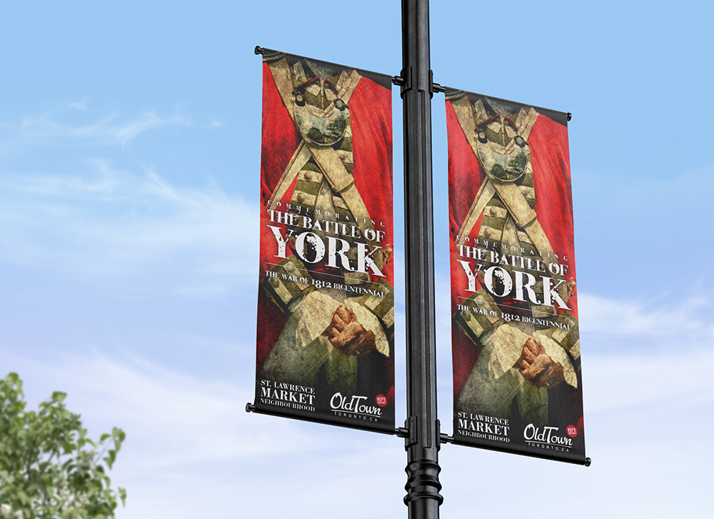 The Battle of York Campaign